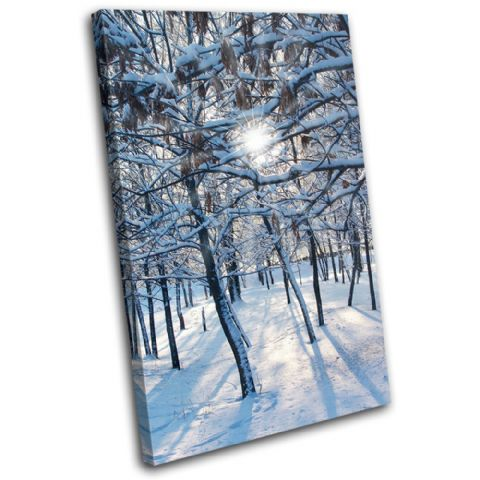 Snow Forest Landscapes - 13-1191(00B)-SG32-PO